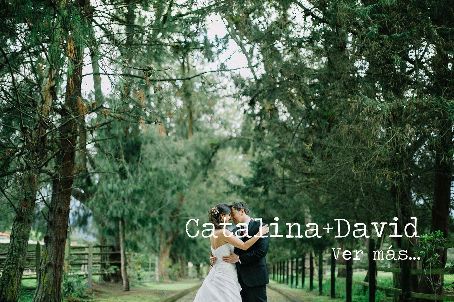 Catalina+Davids